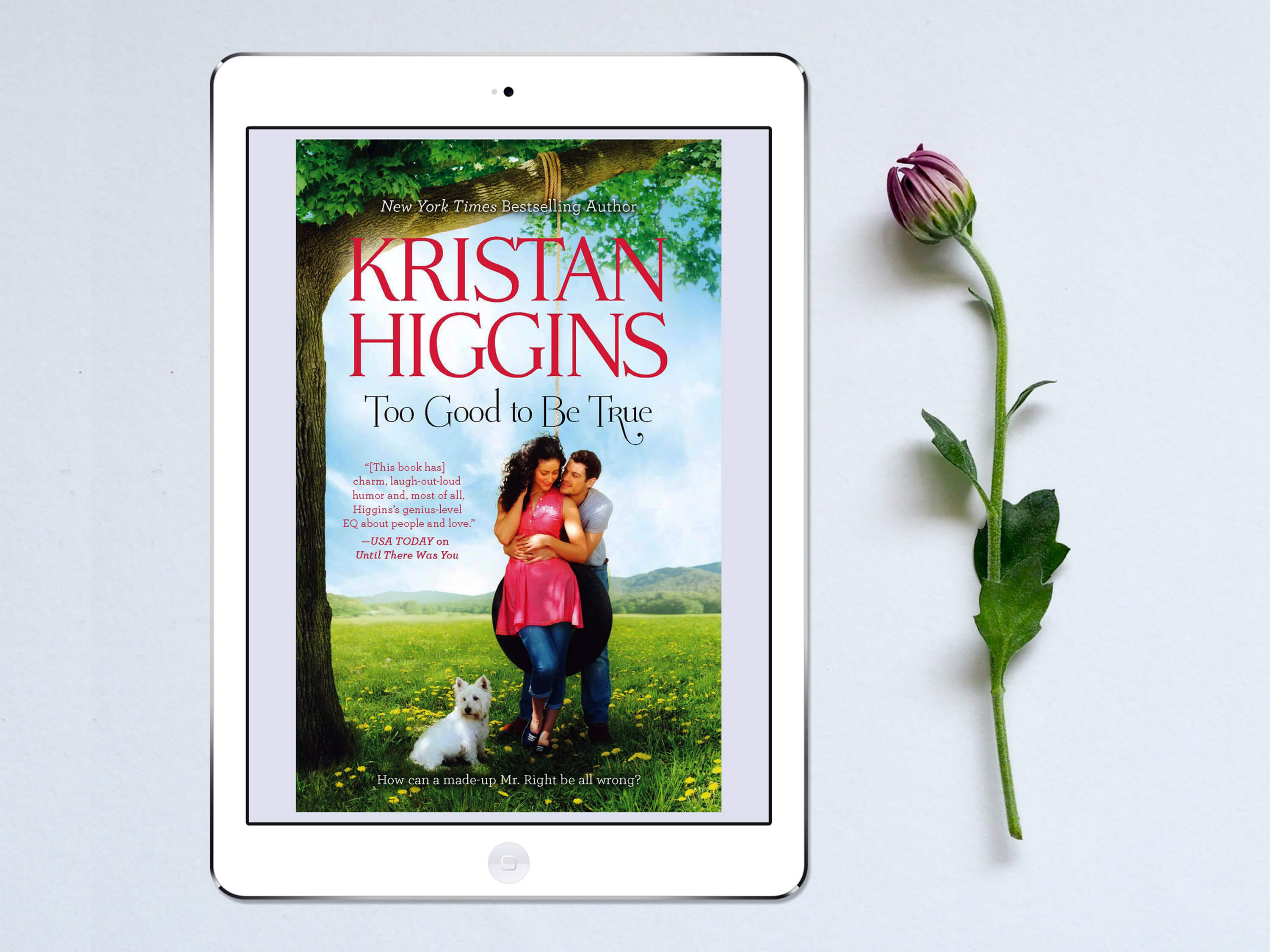 iPad Cover - Too Good to Be True by Kristan Higgins