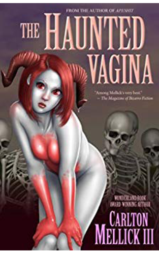 The Haunted Vagina - Front Cover